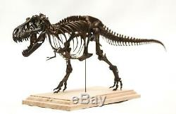 1/20 Tyrannosaurus Rex Trix Skeleton Model T-Rex Dinosaur Collector Toy 3D Print