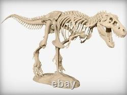 3d printed T-Rex Skeleton dinosaur