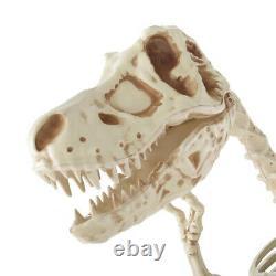 9' Skeleton T Rex Dinosaur Lighted Sound Motion Activated Halloween New Rare
