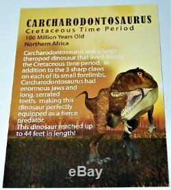 CARCHARODONTOSAURUS Dinosaur VERTEBRA African T-Rex Fossil #14521 46o