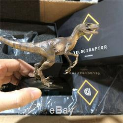 DINO DREAM Tyrannosaurus T Rex & Velociraptor GK Dinosaur Figure Collector Gift