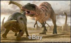 Dent Fossil Carcharodontosaurus T-Rex Dinosaur Fossil Tooth