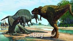 Dent Fossile Dinosaure Carcharodontosaurus T-Rex Dinosaur fossil tooth 91 mm