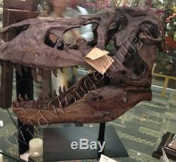 Dinosaur Skull Sculpture On Stand Tyrannosaurus Trex T-Rex XL Desk Art Mantel