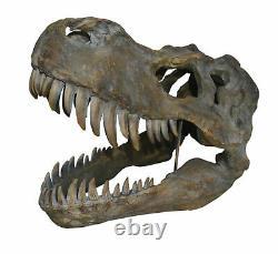 Extra Large 51.5cm T-Rex Tyrannosaurus Rex Wall Hung Dinosaur Skull Nemesis Now