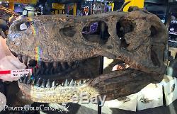 Replica T-rex Tyrannosaurus Rex Skull Dinosaur Fossil Treasures Of Jurassic