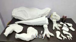 T-Rex 1/8 resin model kit Geene Jurassic Park World dinosaur not Chronicle