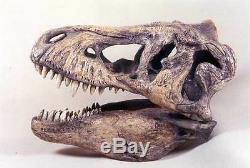 T-rex Dinosaur Skull Replica