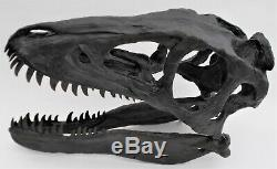 T rex baby SKULL life size Tyrannosaurus rex replica dinosaur fossil