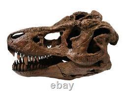 Tyrannosaurus Rex / T. Rex Large Dinosaur Skull Model Replica 1/4 Scale
