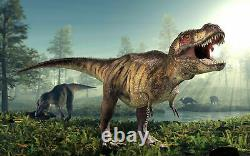 Tyrannosaurus Rex Tooth Piece Partial Real Fossil T-rex Dinosaur Relic Bone Fang