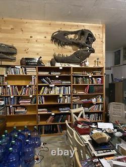 Tyrannosaurus skull (cast) Stan T REX, Dinosaur