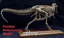 Unpainted 1/35 Tyrannosaurus T-Rex Stan Skeleton Dinosaur Model Collector Gift