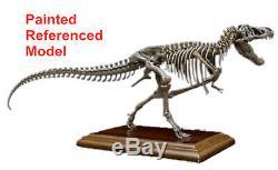 Unpainted 1/35 Tyrannosaurus T Rex Stan Skeleton Model Dinosaur Collector Gift